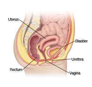 lower vaginal opening fissure