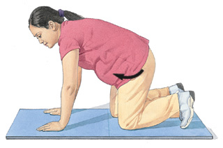 Image of woman on hands and knees, in position for pelvic tilt exercise